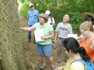20130629 - Tree Stewards - 13