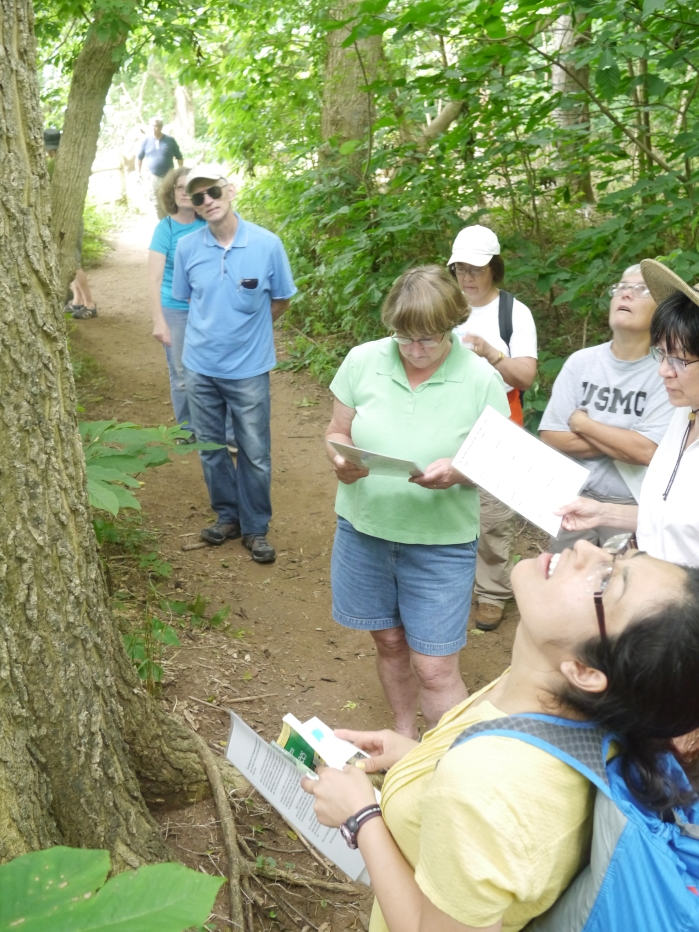 Tree Stewards at Riverbend Park